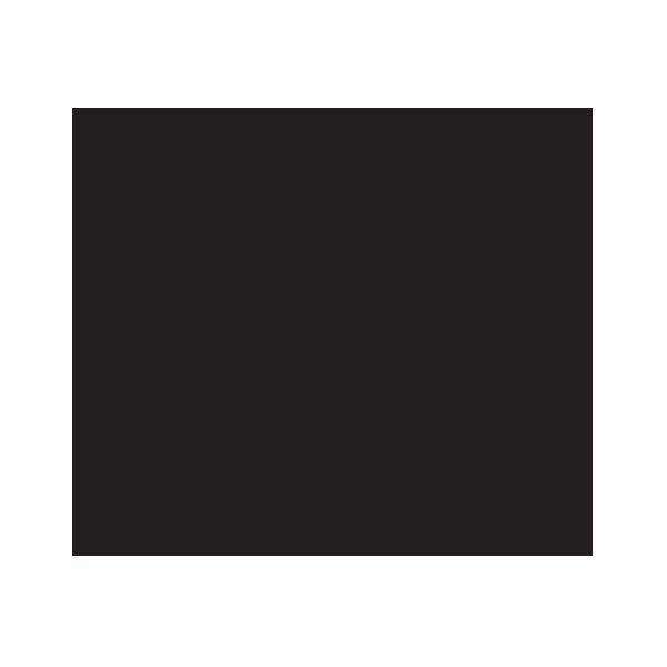 prochef_logo